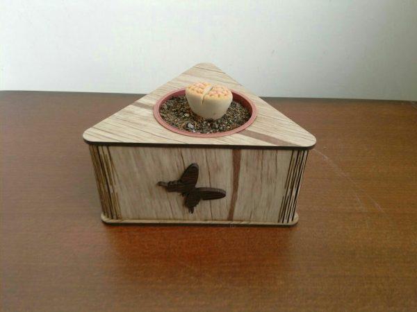باکس گلدان مثلثی
