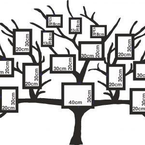 استیکر قاب عکس درخت